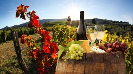gallery/tour-fantastique-tuscany-wine-and-cheese-tour