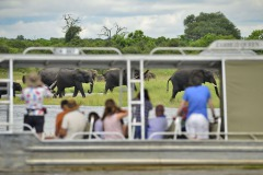 gallery/zambezi queen game viewing boat cruise_1_max1200x800